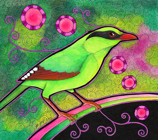 Common Green Magpie illustrated by Ravenari