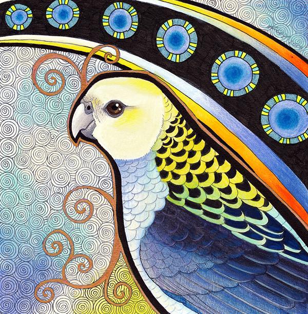 Pale Headed Rosella illustrated by Ravenari